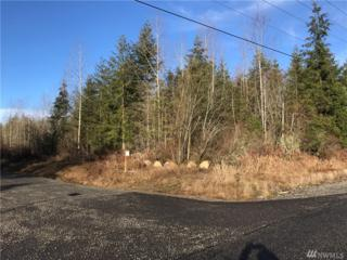 32800 40th Ave S Lot 1, Roy, WA 98580 (#1069312) :: Ben Kinney Real Estate Team