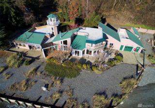 24645 47th Place SW, Vashon, WA 98070 (#1069370) :: Ben Kinney Real Estate Team