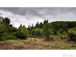 0-XX Aberdeen Lake Rd, Aberdeen, WA 98541 (#1069485) :: Ben Kinney Real Estate Team