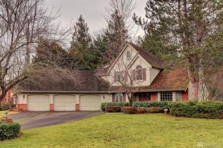 2504 263rd Ct NE, Redmond, WA 98053 (#1069664) :: Ben Kinney Real Estate Team