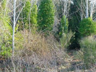 0 Railroad Ave, Carbonado, WA 98323 (#1069897) :: Ben Kinney Real Estate Team