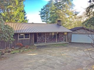 2105 SW Nesadi Dr, Ilwaco, WA 98624 (#1070201) :: Ben Kinney Real Estate Team
