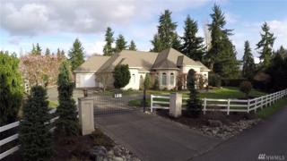 128 Country Club Cir SW, Lakewood, WA 98498 (#1070331) :: Ben Kinney Real Estate Team