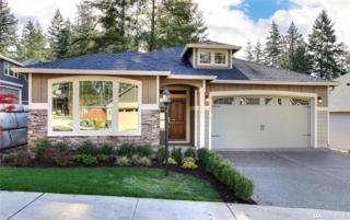 16 119th St Ct NW, Gig Harbor, WA 98332 (#1070366) :: Ben Kinney Real Estate Team
