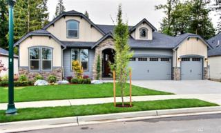 17 119th St Ct NW, Gig Harbor, WA 98332 (#1070544) :: Ben Kinney Real Estate Team
