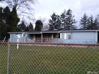 772 State Route 101, Chinook, WA 98614 (#1070557) :: Ben Kinney Real Estate Team