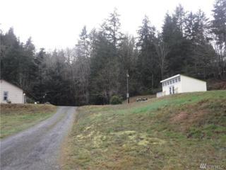 4288 SE Mayvolt, Port Orchard, WA 98366 (#1070621) :: Ben Kinney Real Estate Team