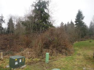 37139 NE No Name Place, Hansville, WA 98340 (#1070717) :: Ben Kinney Real Estate Team