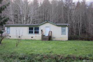 300 Hamma Hamma W, Elma, WA 98541 (#1070727) :: Ben Kinney Real Estate Team