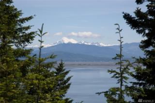 46-Lot 46 Island View Dr, Anacortes, WA 98221 (#1070832) :: Ben Kinney Real Estate Team