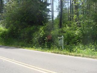 303-xxZ Big Rock Rd, Duvall, WA 98019 (#1071020) :: Ben Kinney Real Estate Team
