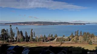 0 Vanderlin Dr, Camano Island, WA 98282 (#1071047) :: Ben Kinney Real Estate Team
