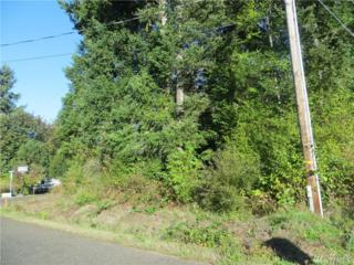 340 E Wood Lane, Shelton, WA 98584 (#1071849) :: Ben Kinney Real Estate Team