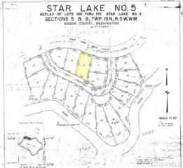 2060 W Star Lake Dr, Elma, WA 98541 (#1071998) :: Ben Kinney Real Estate Team