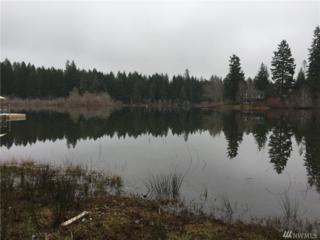 5690 E Mason Lake Dr, Grapeview, WA 98546 (#1072109) :: Ben Kinney Real Estate Team