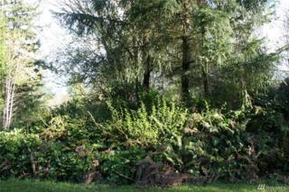 47 Camano, Port Ludlow, WA 98365 (#1072133) :: Ben Kinney Real Estate Team