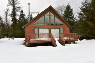 113 Jack Fir Ct W, Packwood, WA 98361 (#1072201) :: Ben Kinney Real Estate Team