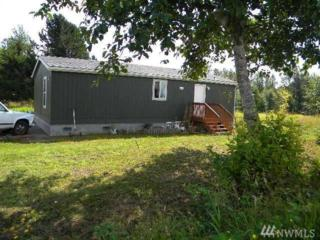 4880 N King Mountain Rd, Bellingham, WA 98226 (#1072271) :: Ben Kinney Real Estate Team