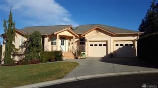 2020 Lindsay Lp, Mount Vernon, WA 98274 (#1073023) :: Ben Kinney Real Estate Team