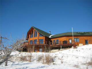 5 Tarbert Loop Rd, Okanogan, WA 98840 (#1073219) :: Ben Kinney Real Estate Team