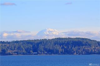 8705 146th Ave KP, Lakebay, WA 98349 (#1073322) :: Priority One Realty Inc.