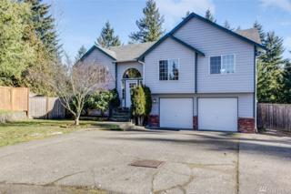 20525 124th St Ct E, Bonney Lake, WA 98391 (#1073385) :: Ben Kinney Real Estate Team