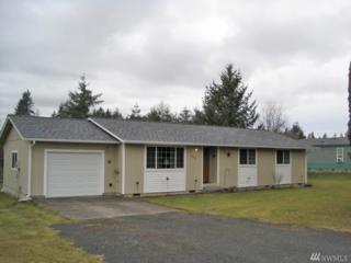 117 NW 2nd Ave, Napavine, WA 98565 (#1073512) :: Ben Kinney Real Estate Team