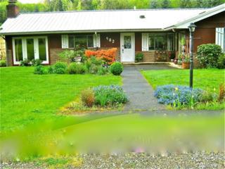 482 Meade Hill Rd, Glenoma, WA 98336 (#1073544) :: Ben Kinney Real Estate Team