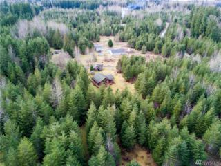 0 Deer Trace Ct, Mineral, WA 98356 (#1073586) :: Ben Kinney Real Estate Team