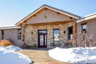 401 Desert View Place, Orondo, WA 98843 (#1073680) :: Ben Kinney Real Estate Team