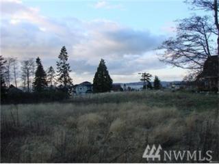 1894 Pinecrest Ave, Coupeville, WA 98239 (#1073819) :: Ben Kinney Real Estate Team