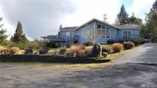 143 E Spruce St, Union, WA 98592 (#1074146) :: Ben Kinney Real Estate Team
