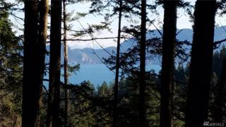 0 Roehl's Hill Rd, Orcas Island, WA 98279 (#1074152) :: Ben Kinney Real Estate Team