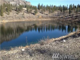 7 Mist Lake Rd, Tonasket, WA 98855 (#1074210) :: Ben Kinney Real Estate Team