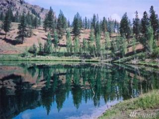 9 Crumbacher Lake Rd, Tonasket, WA 98855 (#1074222) :: Ben Kinney Real Estate Team