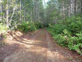 0-Tract 23 NE Dewatto Hills Rd, Tahuya, WA 98588 (#1074282) :: Ben Kinney Real Estate Team