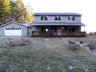 20 NE Arcangle View Lane, Belfair, WA 98528 (#1074300) :: Ben Kinney Real Estate Team