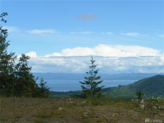 0 Graul Ramapo Rd 10 Acres Rd, Port Angeles, WA 98363 (#1074416) :: Ben Kinney Real Estate Team
