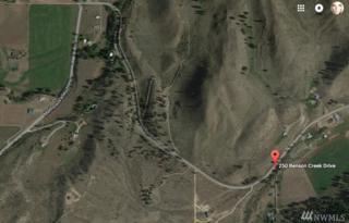 250 Benson Creek Rd, Twisp, WA 98856 (#1074419) :: Ben Kinney Real Estate Team