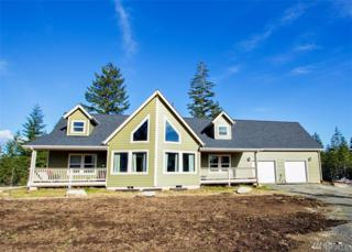 920 E Shetland Rd, Shelton, WA 98584 (#1074653) :: Ben Kinney Real Estate Team