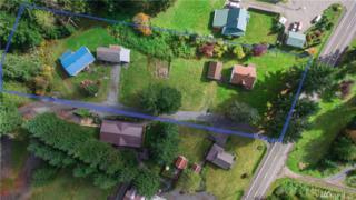 30225 State Route 706 E, Ashford, WA 98304 (#1074756) :: Ben Kinney Real Estate Team