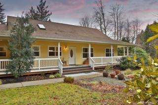 1461 Green Laurel Place, Freeland, WA 98249 (#1074972) :: Ben Kinney Real Estate Team
