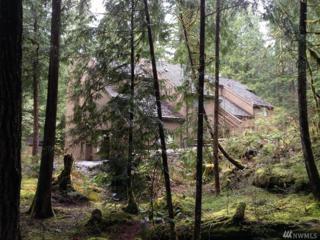 10500 Mt. Baker Hwy #304, Glacier, WA 98244 (#1075115) :: Ben Kinney Real Estate Team