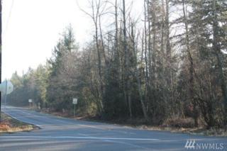 16521 153rd Ave SE, Yelm, WA 98597 (#1075259) :: Ben Kinney Real Estate Team