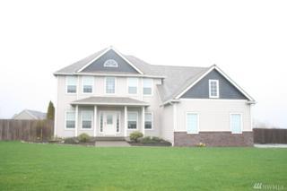 17434 Dusty Court SW, Tenino, WA 98589 (#1075415) :: Ben Kinney Real Estate Team