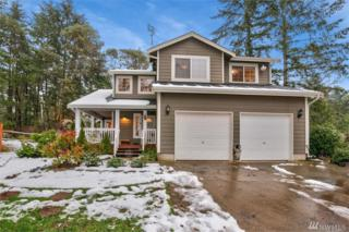 1321 197th Ave KP, Lakebay, WA 98349 (#1075941) :: Priority One Realty Inc.