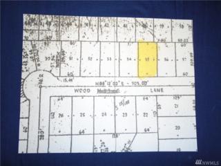 60 E Wood Lane, Shelton, WA 98584 (#1076056) :: Ben Kinney Real Estate Team