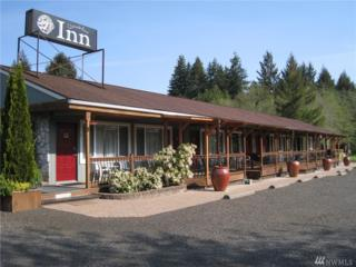 8 River Drive, Amanda Park, WA 98526 (#1076429) :: Ben Kinney Real Estate Team