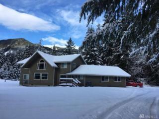 690 Falls Rd, Randle, WA 98377 (#1076554) :: Ben Kinney Real Estate Team