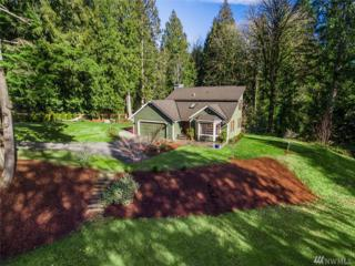 16410 202nd Ave NE, Woodinville, WA 98077 (#1076760) :: Ben Kinney Real Estate Team